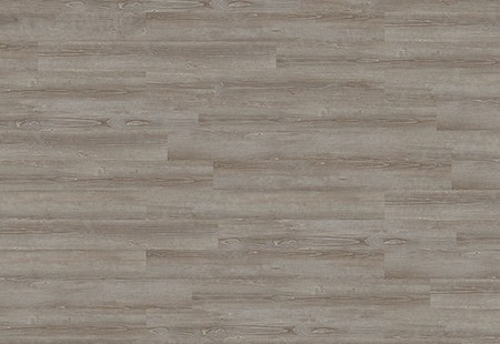 Expona Commercial - Grey Pine 4063